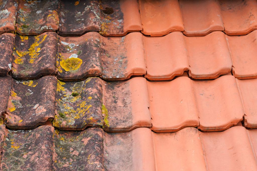 Démoussage de toiture en rénovation à la Rochelle (17)